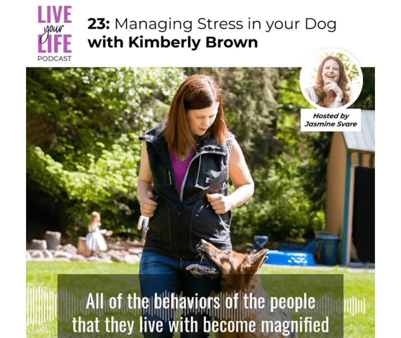 023 Managing Stress in your Dog with Kimberly Brown